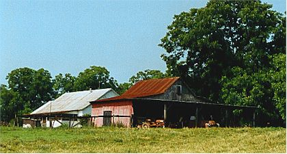 Barn with old Truck.jpg (31209 bytes)