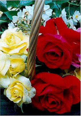 Rose Basket.jpg (32009 bytes)